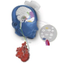 Neuro-Cardiac-Guided Transcranial Magnetic Stimulation